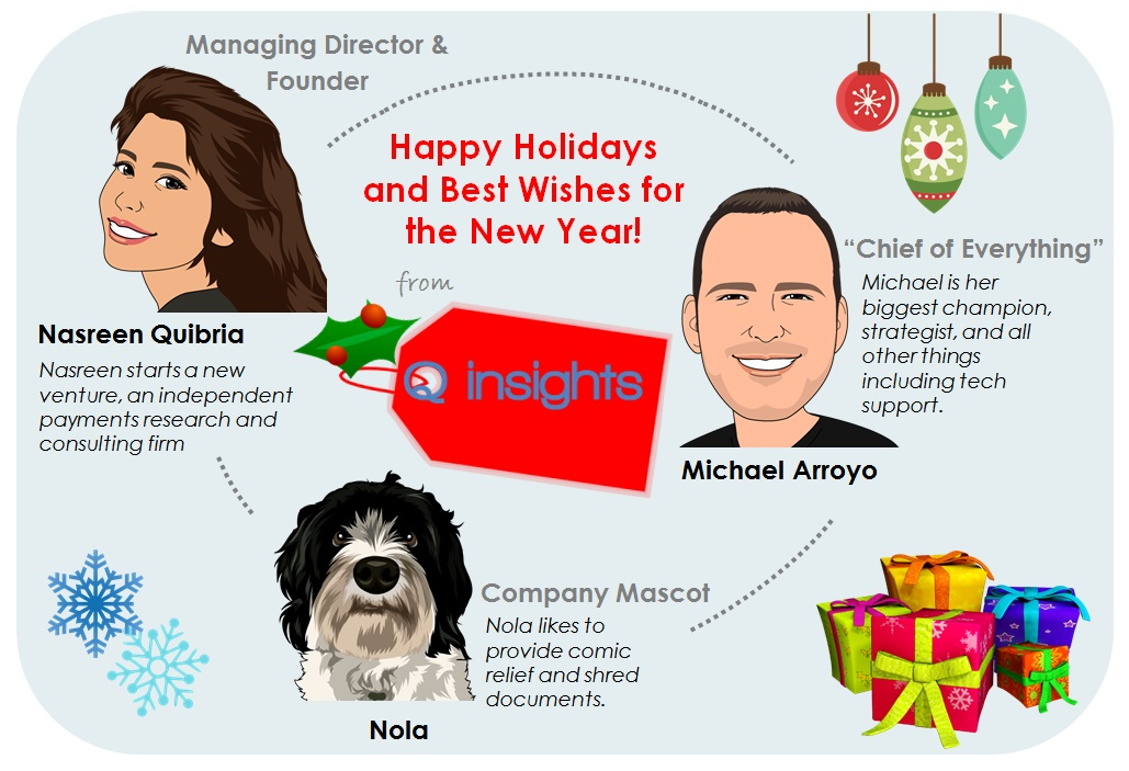 Q insights Holiday 2015